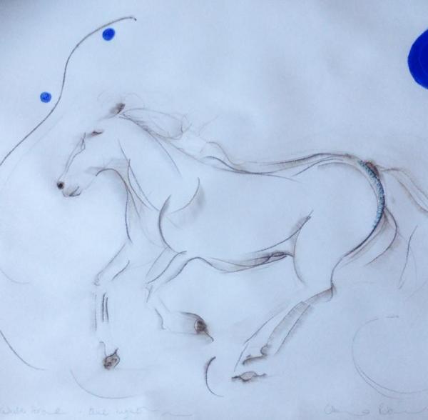 white horse, blue light beach
