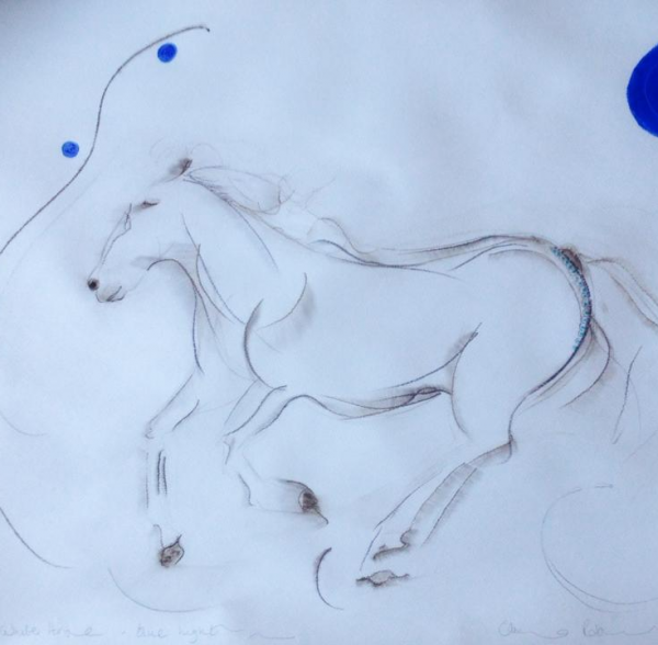 white horse, blue light beach